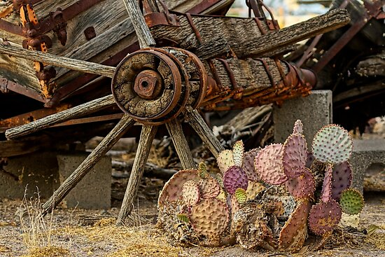 Nopal and Wagon Wheel by Larry Costales