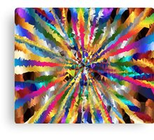 many colours Canvas Print