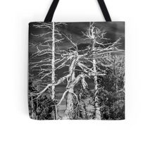 Crater Lake Sentinels Monochrome Tote Bag