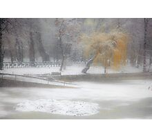 Park During Heavy Snowfall In Winter In Bucharest, Romania Photographic Print
