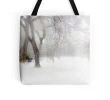Park During Heavy Snowfall In Winter In Bucharest, Romania Tote Bag