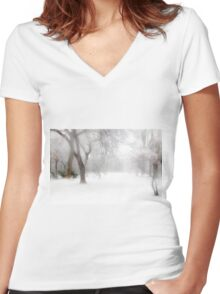 Park During Heavy Snowfall In Winter In Bucharest, Romania Women's Fitted V-Neck T-Shirt