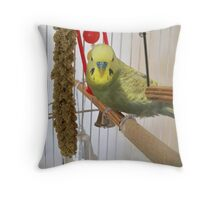 My Cage, My Toys Throw Pillow