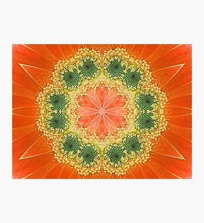 Daisy Kaleidoscope Photographic Print