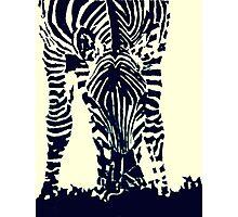 """Zebra"" Pen and Ink Photographic Print"