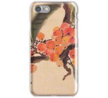 Kumquat paradise iPhone Case/Skin