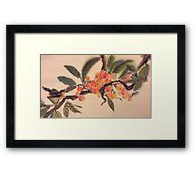 Kumquat paradise Framed Print