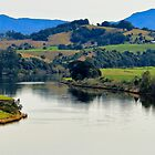 Beautiful Manning River 06663 by kevin chippindall