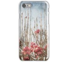 Spring Sky Line  iPhone Case/Skin