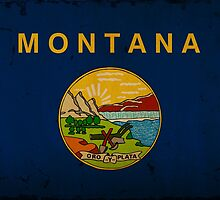 Montana State Flag VINTAGE by Carolina Swagger