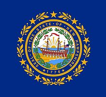 New Hampshire State Flag by Carolina Swagger