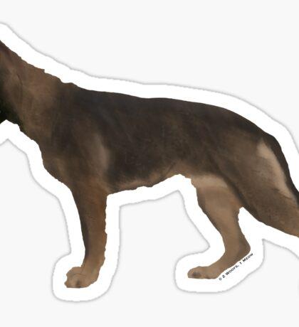 German Shepherd: Red Sable Sticker