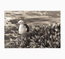 Seagull On The Seashore Kids Tee
