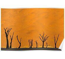 Namibian desert Poster