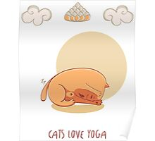 Red Yoga Cat in Head To Knee Forward Bend Poster