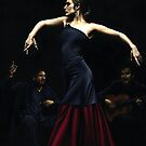 Encantado por Flamenco by Richard Young