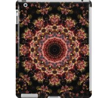 DMCA EQIX iPad Case/Skin