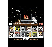 Internet Cat Fight Photographic Print