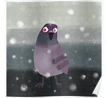 Angry Pigeon Poster