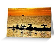 Baltic Sea morning birds Greeting Card