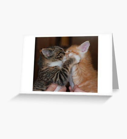 Kissing Kittens Greeting Card