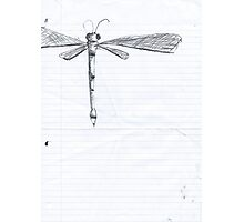 Dragonfly Sketch. Photographic Print