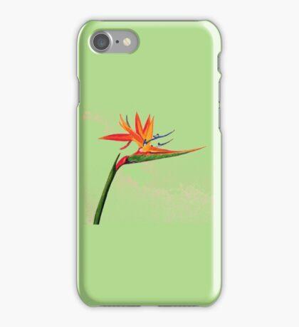 Bird of Paradise (Green Background) iPhone Case/Skin