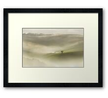 Lonely Tree in the morning fog Framed Print