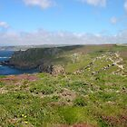 Cornish Coast by Claudia Dingle