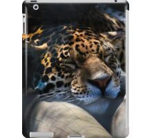 Snoozy iPad Case/Skin