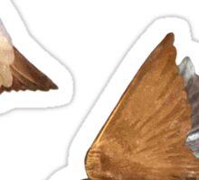 Flying Tree Swallows Sticker