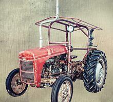 Grey Fergie Tractor  by Linda Lees