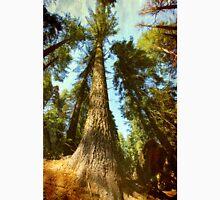 Sequoia tree Unisex T-Shirt