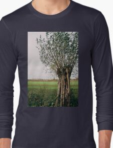 Pollard Willow In The Wind Long Sleeve T-Shirt