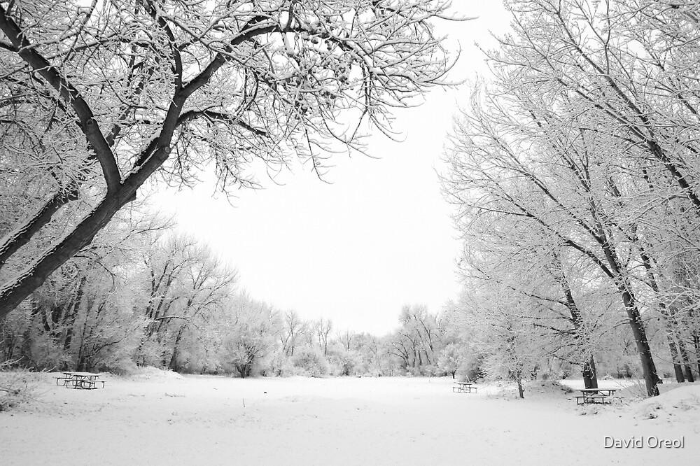 Snowy Field by David Oreol