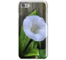 Mother Nature Is Creeping In...........Convolvulus arvensis  iPhone Case/Skin