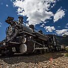 Train by Cara Merino
