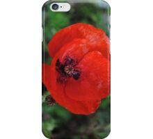 Is still A Poppy iPhone Case/Skin
