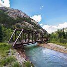 Bridge by Cara Merino