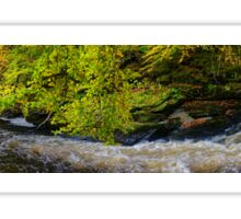 Panoramic River Bend Sticker