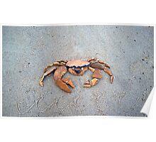 Crab, not Crab! Poster
