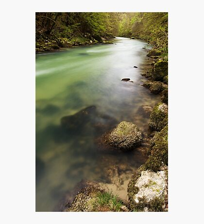Along Valserine river Photographic Print