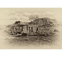 The Apple Tree In Sepia Photographic Print