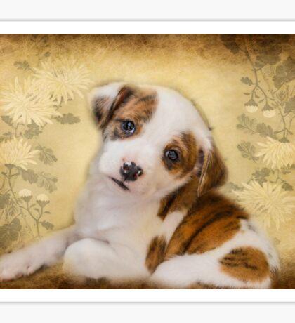 Cutest Puppy Mix Breed  Sticker