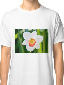 White Daffodil Classic T-Shirt