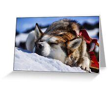 SLEEPING DOG Greeting Card