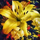 Bold Gold by RC deWinter