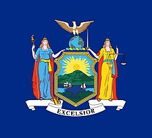New York State Flag by Carolina Swagger