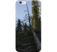 morning hiking iPhone Case/Skin