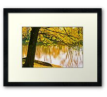Fall Colors Bright Yellow Over Mississippi  Framed Print